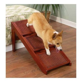 1000+ images about Dog ramps and stairs on Pinterest |