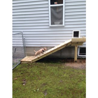 Outdoor Dog Ramp Visual Hunt