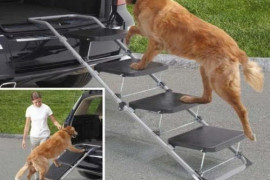 Dog Ramp For Car - SUVs & Trucks