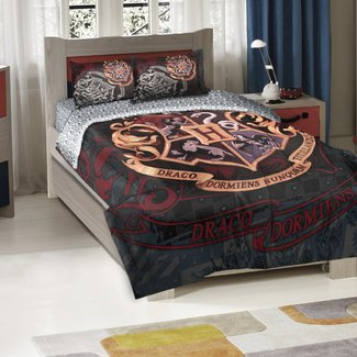 Bedroom Decor Ideas and Designs: Harry Potter Themed ...