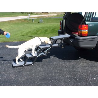Best Dog Car Ramps for Old or Short Dogs in