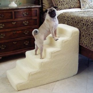 50+ Dog Stairs For High Bed You'll Love in 2020 - Visual Hunt
