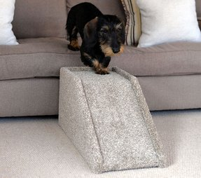 50 Dog Ramp For Bed You Ll Love In
