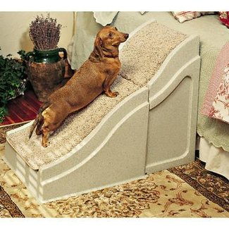 Dog Ramps For Beds. Dog Ramps For Beds. . . Easy Tips