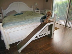 50 Dog Ramp For Bed You Ll Love In 2020 Visual Hunt