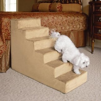 Dog Stairs For High Bed Steps | Dog Breeds Picture