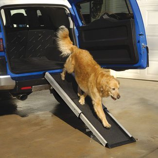 Dog Steps For High Beds And Cars |