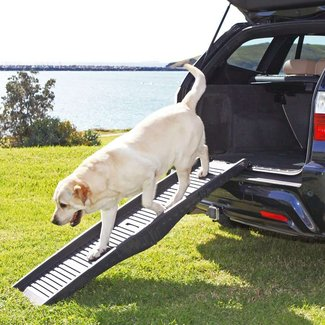Folding Dog Car Ramp - House of Pets