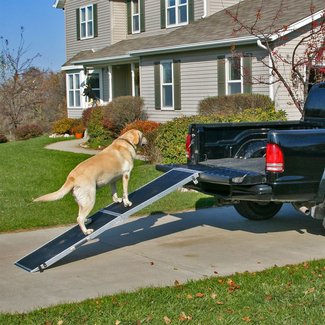 Folding Dog Steps For Cars |