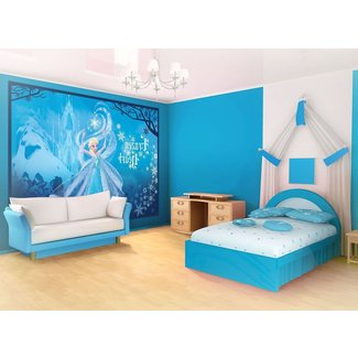 . Frozen Room Decor   Visual Hunt