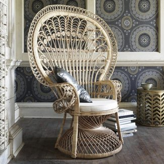 Furniture: Endearing Peacock Chair | Endearing Peacock ...