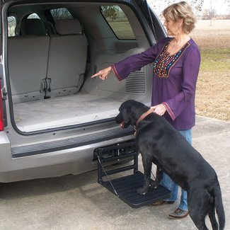 Great Day HU200B - Great Day Hitch-Up Pet Step -