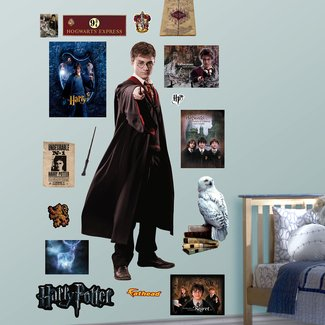 Harry Potter - Order of The Phoenix Peel and Stick Wall Decal