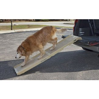 How to Build A Dog Ramp: Tools And Materials