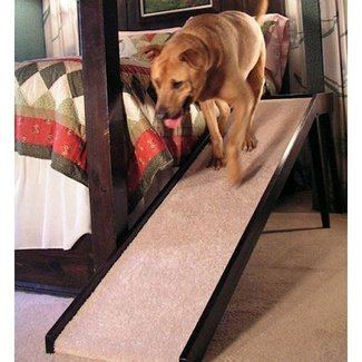Normal Slope Dog Bed Ramp - NipandBones