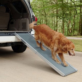 Pet Dog Ramp Portable Stairs Car Truck SUV Step Travel