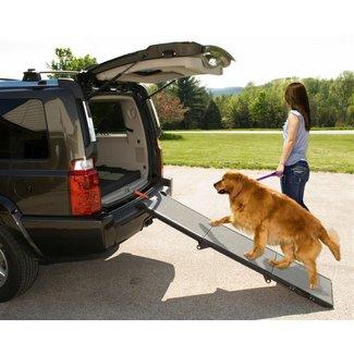 PSICOLMASCOT: Cómo adiestrar a tu mascota con rampas o ...