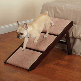 Stairs For DogsDog Ramp for Bed - Stairs For Dogs
