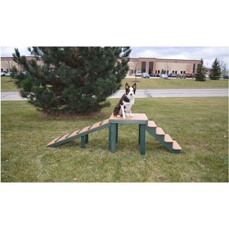 Top Dog Bridge - Stairs and Ramp | Barco Products
