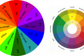 How To Choose A Color Scheme – The Basics Of Color Coordination