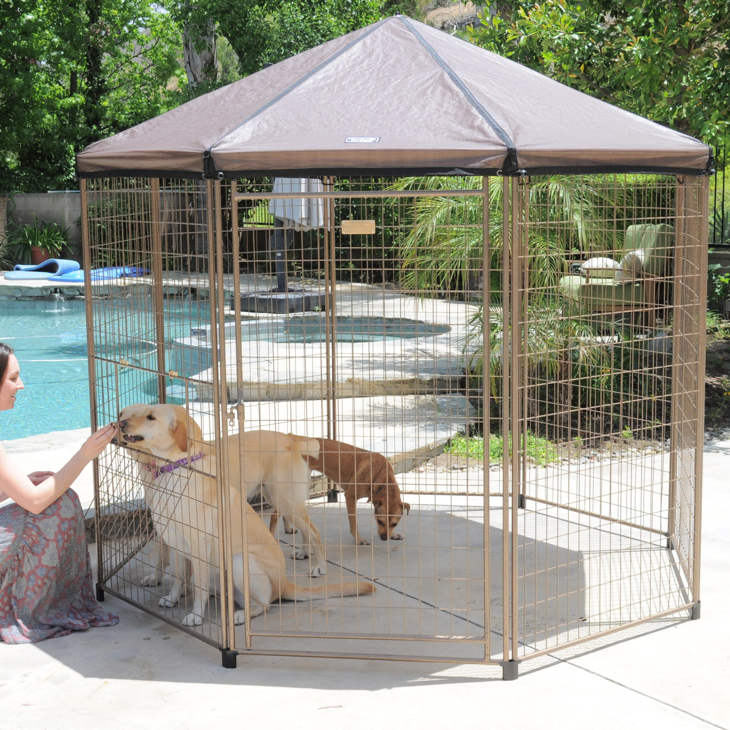 Pet Gazebo Yard Kennel