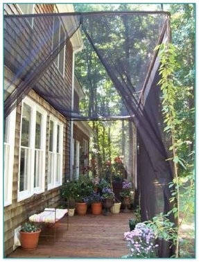 50 Mosquito Netting For Patio You Ll