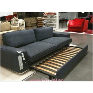 Groovy 50 Sectional Couch With Pull Out Bed Youll Love In 2020 Cjindustries Chair Design For Home Cjindustriesco