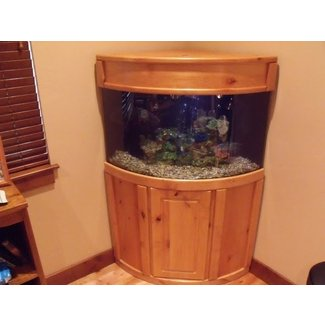 50 Corner Aquarium With Stand You Ll Love In 2020