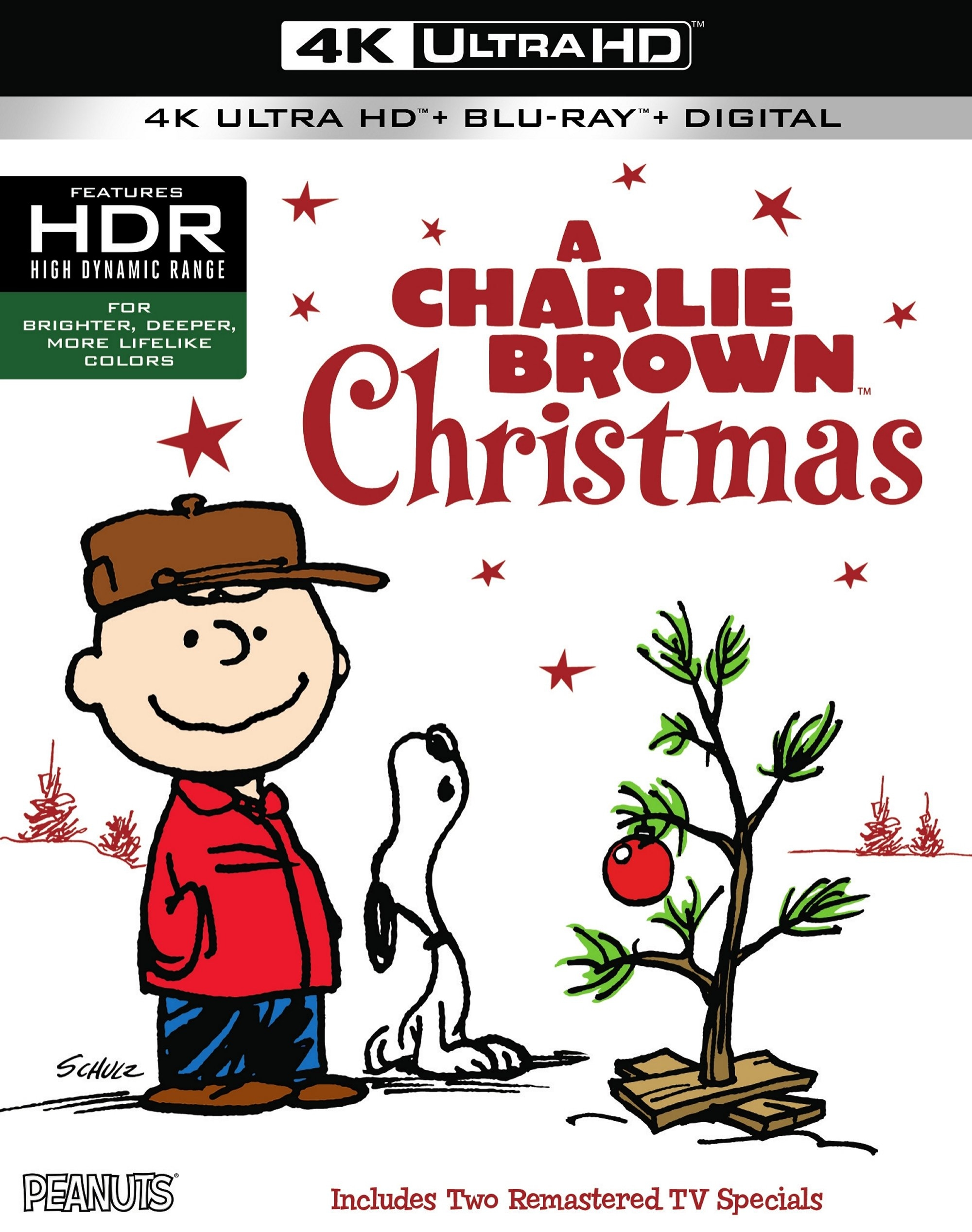 Charlie Brown Christmas Tree You'll Love in 2020 - VisualHunt