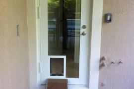 Door With Dog Door