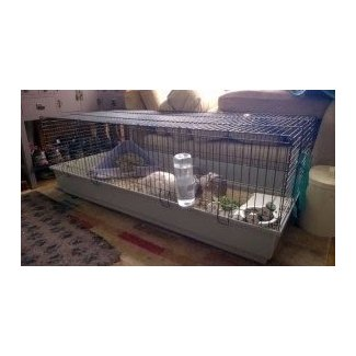 50 Large Indoor Rabbit Cage You Ll