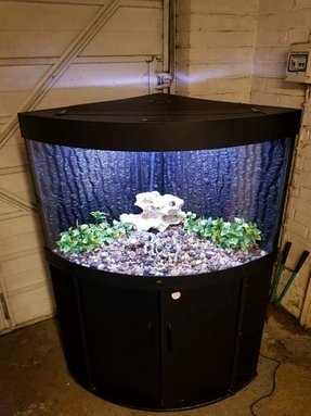 190ltr Corner Tank With Stand External Filter Heater And Fish
