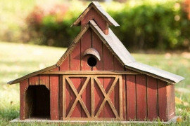 4 Expert Tips to Choose a Bird House