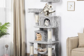 3 Expert Tips To Choose A Cat Tree And Condo
