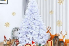 3 Expert Tips To Choose A Real Christmas Tree