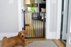 3 Expert Tips to Choose Pet Gates