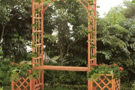 3 Expert Tips To Choose An Arbor