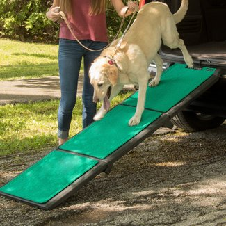 "Multifold Supertrax 71"" Pet Ramp"