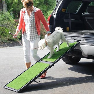 "Natural-Step 72"" Pet Ramp"
