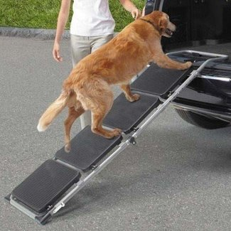 "Ride Right Foldaway 58"" Pet Ramp"