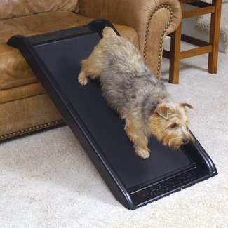 "Smart Junior 39.5"" Pet Ramp"