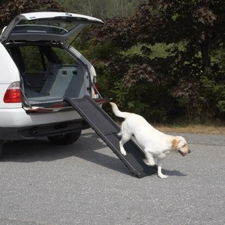 "Vehicle 62"" Pet Ramp"