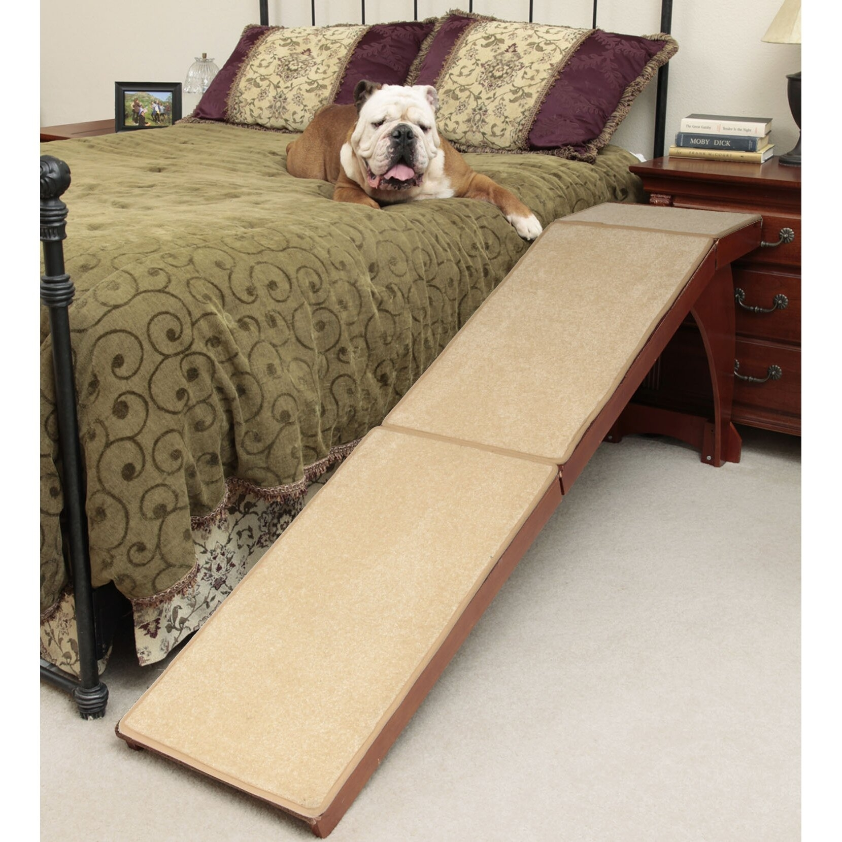 Dog Ramp For Bed You Ll Love In 2020 Visualhunt